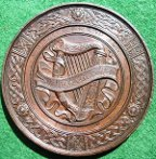 Ireland Irish Cork medal 1883